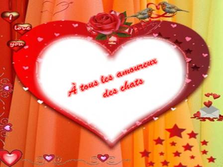 Joyeux St. Valentin à tous